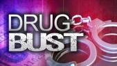 drug-bust